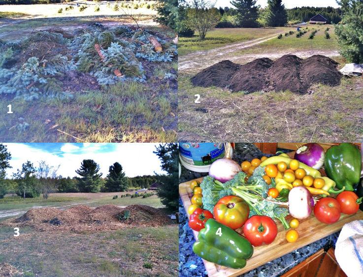gardenprocess