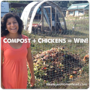 Compost plus chickens equals win