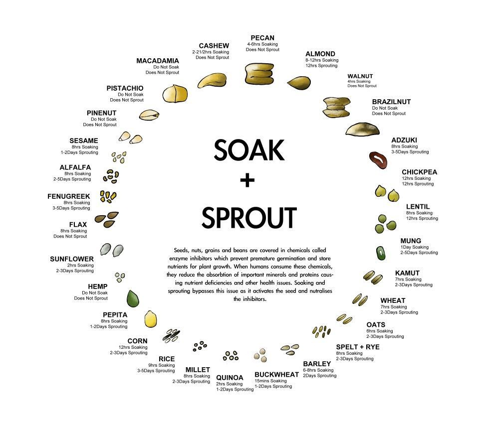 Soak and Sprout