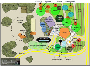 Realeyes Farm Permaculture Design – Zone 1 Layout Details