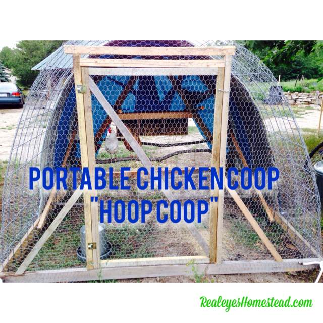 "How to Build a Chicken Tractor ""Hoop Coop"""