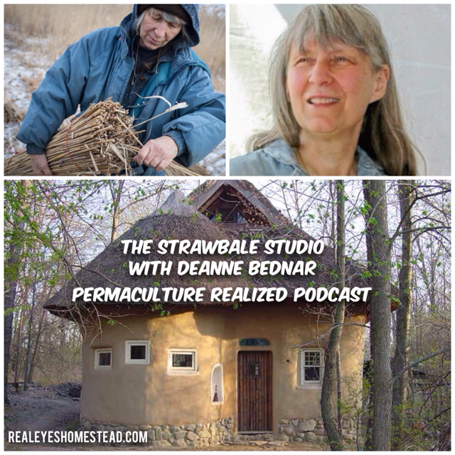 Permaculture Realized Podcast Episode 7, The Strawbale Studio, Thatch Roofs, Earth Plaster and Natural Building with Deanne Bednar