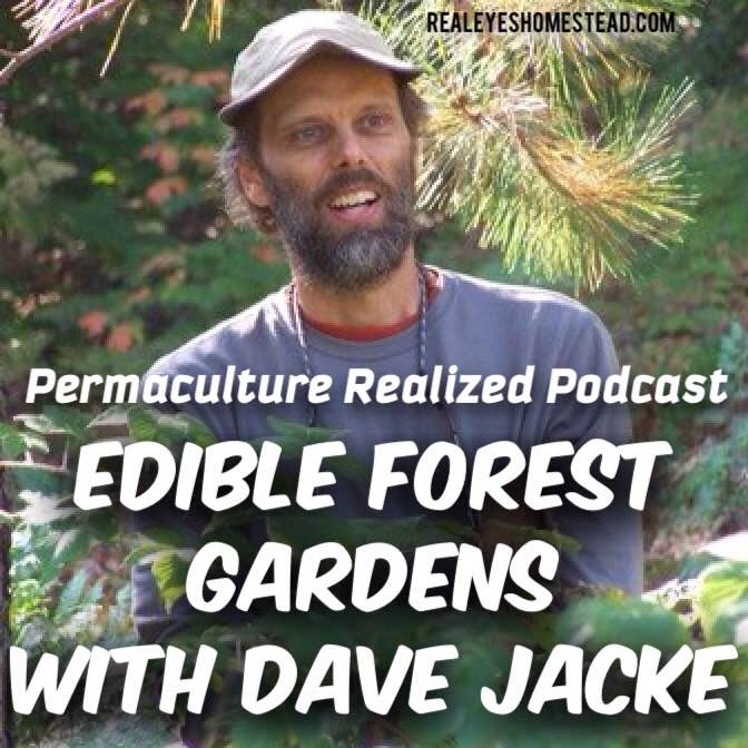 Edible forest gardens podcast with dave jacke forest for Garden design podcast