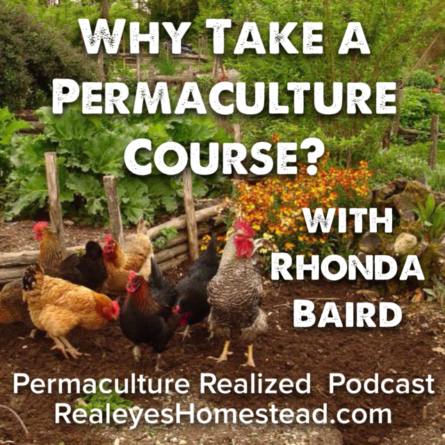 Permaculture Realized Podcast Episode 19, Why Should I Take a Permaculture Design Course? with Rhonda Baird