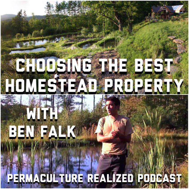 Choosing the Best Homestead Property with Ben Falk
