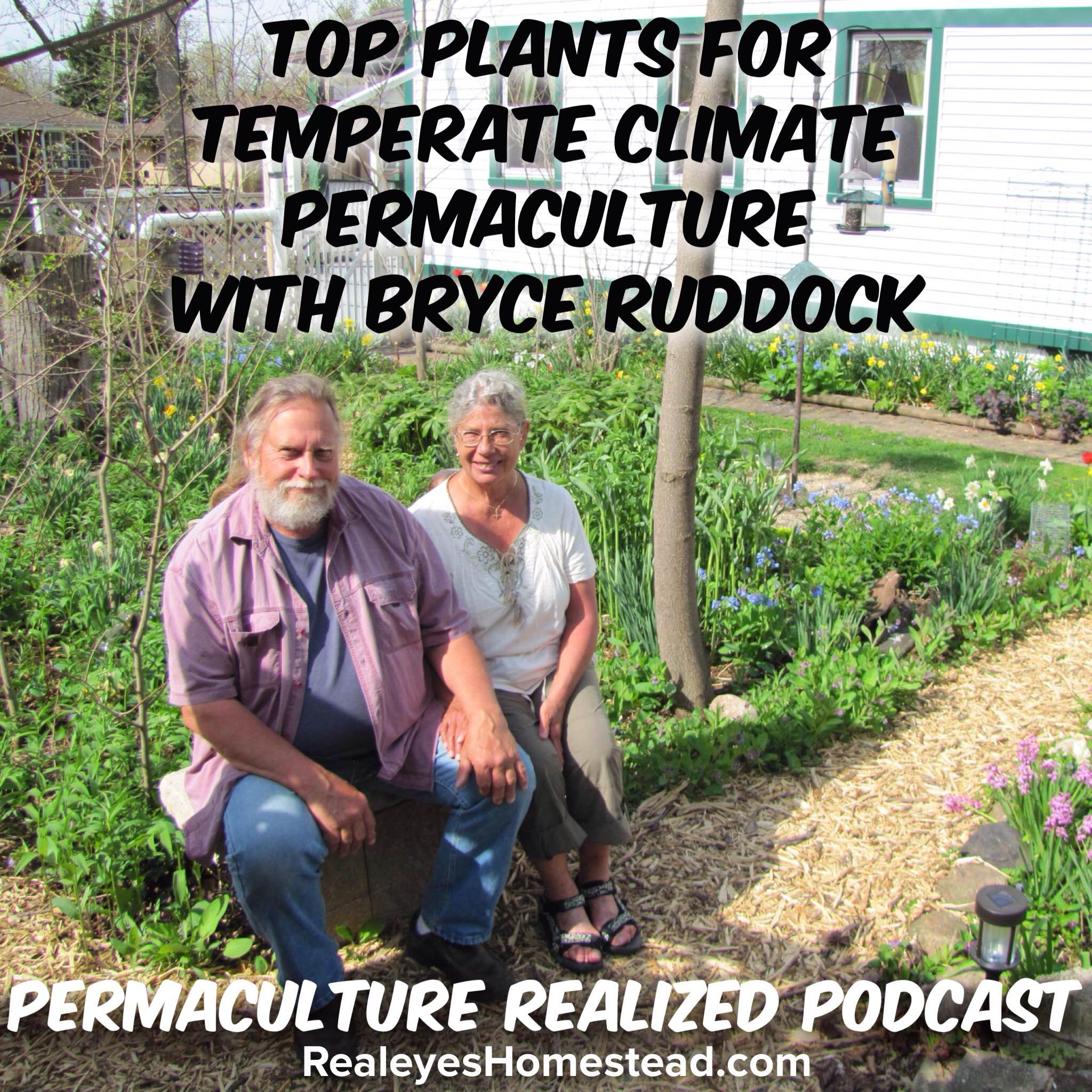 Permaculture Realized Podcast Episode 31, Top Plants for Temperate Climate Permaculture with Bryce Ruddock