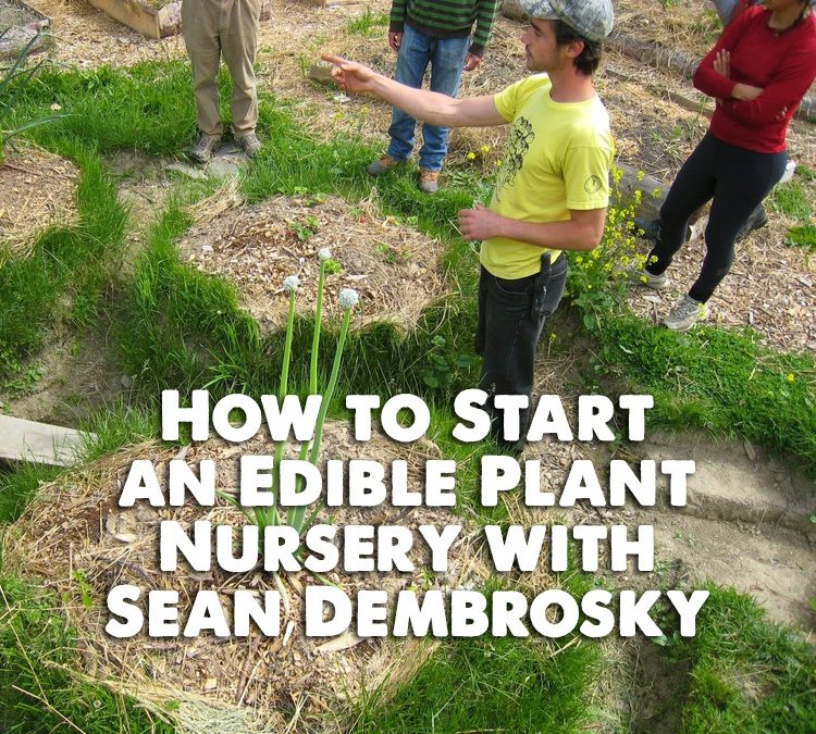 Permaculture Realized Podcast Episode 34, How to Start an Edible Plant Nursery with Sean Dembrosky
