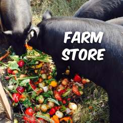 Permaculture Homestead Farm Store