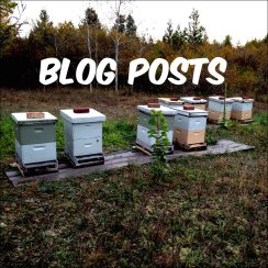 Permaculture Homestead Blog